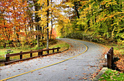 Monroe Photo Metal Prints - Winding Road Metal Print by Kristin Elmquist