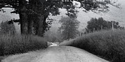 Black And White Rural Photography Prints - Winding Rural Road Print by Andrew Soundarajan