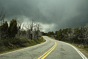 Yellow Line Photo Prints - Winding Two Lane Road Print by Ned Frisk