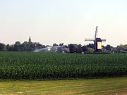 Cornfield Photos - Windmill in a Dutch Cornfield by William Kilty