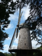 Golden Gate Park Photos - Windmill through the Trees by Carol Groenen