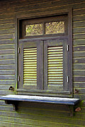 Cabin Wall Photo Framed Prints - Window and moss Framed Print by Carlos Caetano