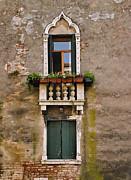 Window Art Venice Print by Forest Alan Lee