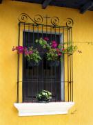 Antigua Prints - Window at Old Antigua Guatemala Print by Kurt Van Wagner