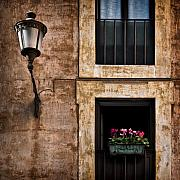Rustic Metal Prints - Window Box Metal Print by David Bowman