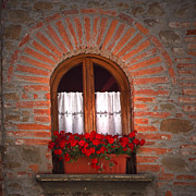 Red Geraniums Prints - Window Box with Geraniums Print by Susan Rovira