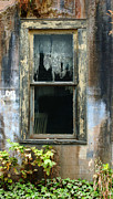 Old Wall Prints - Window In Old Wall Print by Jill Battaglia