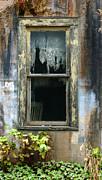 Window In Old Wall Print by Jill Battaglia