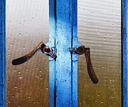 Wet Window Posters - Window Latches Poster by Skip Nall