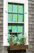 Window Box Prints - Window on Marthas Vineyard Island Massachusetts Print by Michelle Wiarda