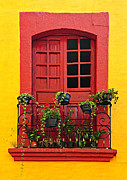 Flowerpots Framed Prints - Window on Mexican house Framed Print by Elena Elisseeva