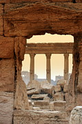 Palmyra Photos - Window On The Past At Palmyra, Syria by Joe & Clair Carnegie / Libyan Soup