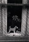 Window Scene Print by Charles Stuart