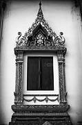Thanh Tran - Window
