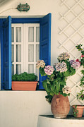 Hydrangea Posters - Window With Flowers Poster by Joana Kruse