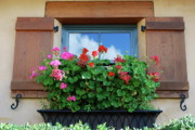 Red Geraniums Photo Prints - Window with Geraniums Print by Dorota Nowak