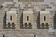Scenic - Monuments - Windows of Fort Quaitbey by Darcy Michaelchuk