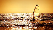 Surf Lifestyle Posters - Windsurfer silhouette over sea sunset Poster by Anna Omelchenko