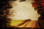 Fall Scenes Metal Prints - Windy Journey Metal Print by Emily Stauring
