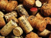 Shock Prints - Wine and Champagme Corks Print by Cathie Tyler