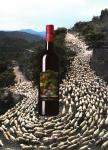 Wine-bottle Mixed Media - Wine and Goats by Francine Gourguechon