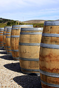 Pinot Noir Photos - Wine Barrels by Denise Pohl