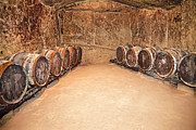 Wine Barrel Photos - Wine Cave, Loire Valley, France by Jay B. Adlersberg