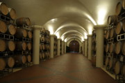 Wine Cellar Photos - Wine Cellar by Wongmo Simons