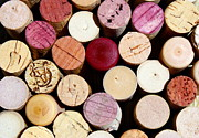 Wine Cork Collection Prints - Wine Corks 3 Print by Sophie Vigneault