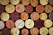 Detail Prints - Wine corks Print by Elena Elisseeva