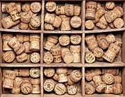 Bottle Cap Collection Posters - Wine Corks Fine Art - Matusciac Poster by Matusciac Alexandru