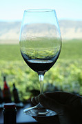 Pinot Noir Photos - Wine Glass by Mary McGrath