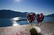 Blue Grapes Photos - Wine glass with wine grapes by Mats Silvan