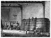 Wine-press Framed Prints - Wine Production, 19th Century Framed Print by Cci Archives