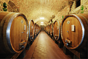 Aging Photos - Wine Storage in Oak Barrels by Jeremy Woodhouse