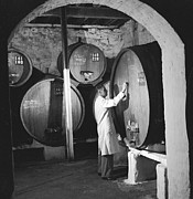 Winetasting Prints - Wine Vaults Print by Ejor
