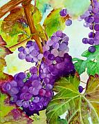 Vine Grapes Painting Posters - Wine Vine Poster by Karen Fleschler