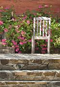 Red Geraniums Digital Art Posters - Winery Chair Poster by Sharon Foster
