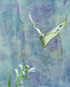 Butterfly In Flight Prints - Winging It Print by Betty LaRue