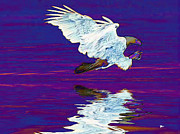 Eagles In Flight Prints - Wings by God Print by Wayne Bonney
