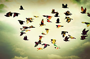Spread Wings Prints - Wings Of Colors Print by Manuel Orero Galan