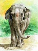 Elephant Painting Prints - Winky Print by Galen Hazelhofer