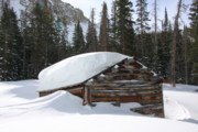 Log Cabins Photo Originals - Winter at the Agnes Cabin  by Cynthia  Cox Cottam