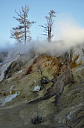 Upper Geyser Basin Acrylic Prints - Winter at Yellowstones Mammoth Terrace by Bruce Gourley