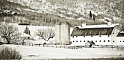 Farming Barns Framed Prints - Winter Barn 3 Framed Print by Marilyn Hunt