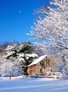 Americana Prints Posters - Winter Barn Scene-Warren Ct Poster by Thomas Schoeller