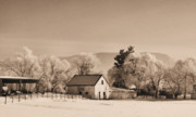 Barn Covered In Snow Framed Prints - Winter Barn -Sepia Framed Print by Denise Jenks