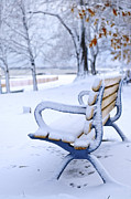 Benches Photo Framed Prints - Winter bench Framed Print by Elena Elisseeva
