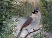 Bluejay Metal Prints - Winter Bird Metal Print by Susan Jenkins