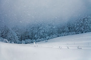Central Balkan Photos - Winter Blizzard by Evgeni Dinev